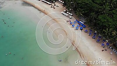 Sun-Betten auf Strand Vogelperspektive vieler zusammengepaßten Sonnenruhesessel mit Regenschirm auf einsamem Strand mit sauberem  stock footage