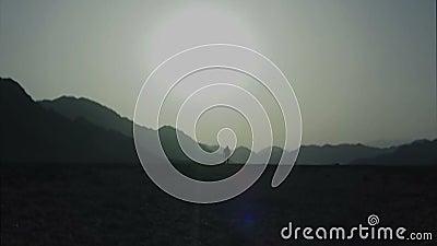 Sun blanc du désert de Sinai banque de vidéos