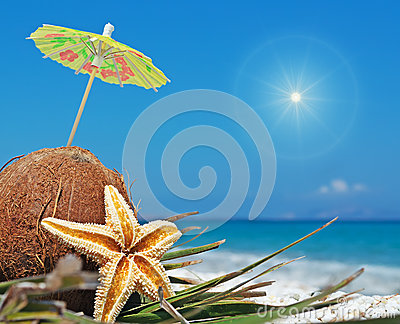 Sun and coconuts