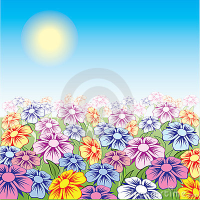 Sun day on flowering a meadow.