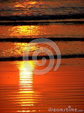Sun Flame