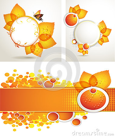 Sun flower with bee and honey brochure layout