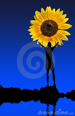 Sun flower and man