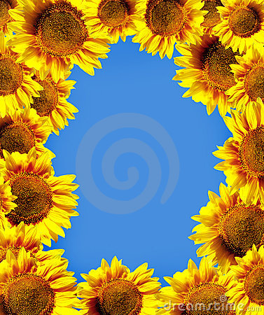 Sun flowers over sky
