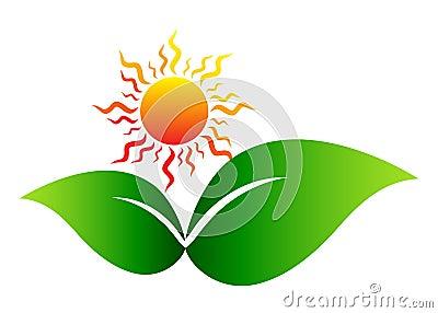 Sun with leaf Vector Illustration