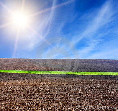 Sun over arable field with green line
