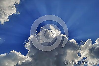 The sun s rays