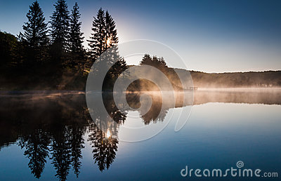 The sun shines through pine trees and fog at sunrise, at Spruce Knob Lake, West Virginia Stock Photo