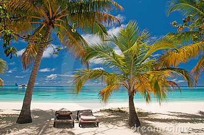 Sunbeds em uma praia tropical