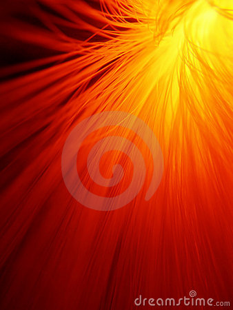 Free Sunburst In Fire Red Royalty Free Stock Photo - 3371675