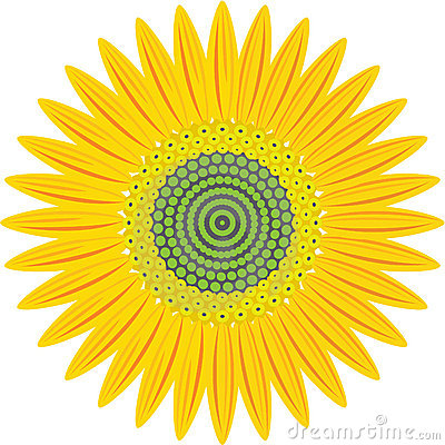 Sunflower Stock Photo - Image: 16110130