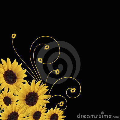 Free Sunflower Abstract Vector Stock Photos - 14608603