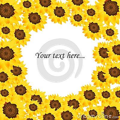 Sunflower background