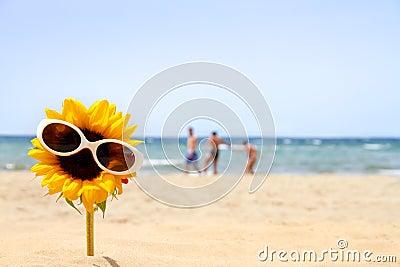 Sunflower on the beach