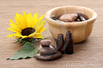 Sunflower beauty treatment