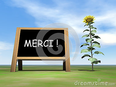 Sunflower blackboard saying thank you in french -