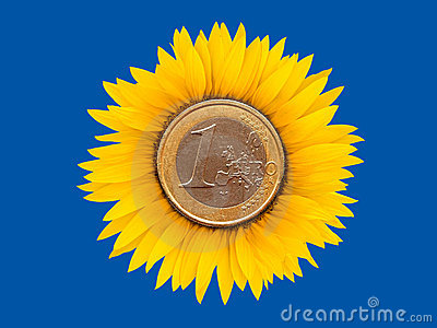 Sunflower-coins