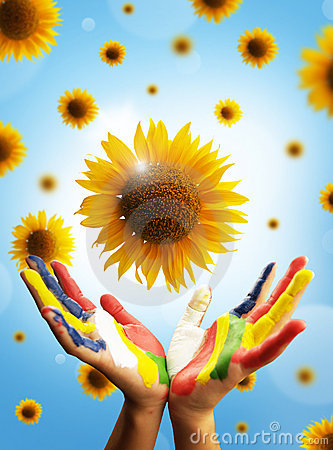 Sunflower Concept Royalty Free Stock Images - Image: 18713829