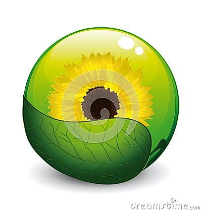 Sunflower concept