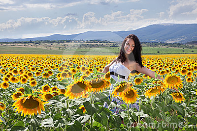 Sunflower field in Bulgaria