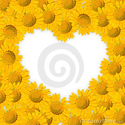 Free Sunflower Frame Stock Photo - 19673060