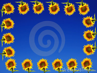Sunflower Frame on Blue Ground