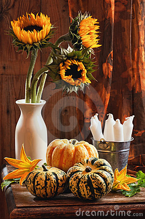Free Sunflower & Gourds Still Life Royalty Free Stock Photography - 15847307