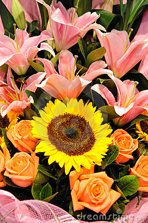 Sunflower and lily flowers