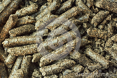 Sunflower oilcake pellets