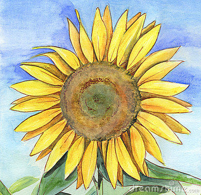 Free Sunflower Painting Stock Photography - 1581112