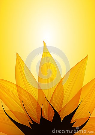 Free Sunflower Part. Vector Royalty Free Stock Photo - 33595015