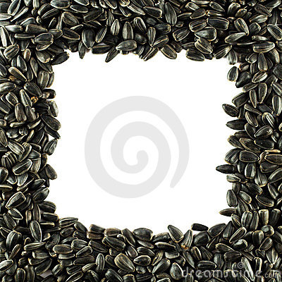 Sunflower seeds frame