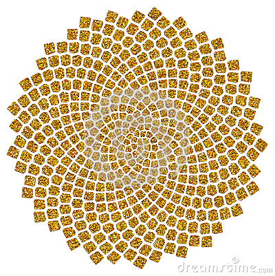 Free Sunflower Seeds - Golden Ratio - Golden Spiral - Fibonacci Spiral Royalty Free Stock Photos - 29725038
