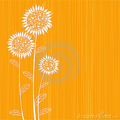 Free Sunflowers Stock Image - 9035091