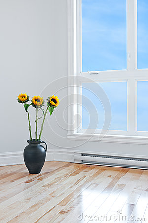 Free Sunflowers In Empty Room With Big Window Royalty Free Stock Image - 27697996