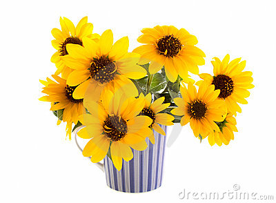 Sunflowers in a striped mug