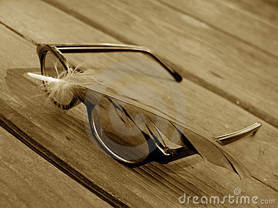 Sunglasses and feather 2