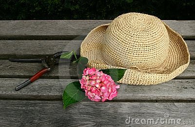 Sunhat on bench