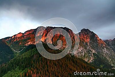 Sunlight on mountain