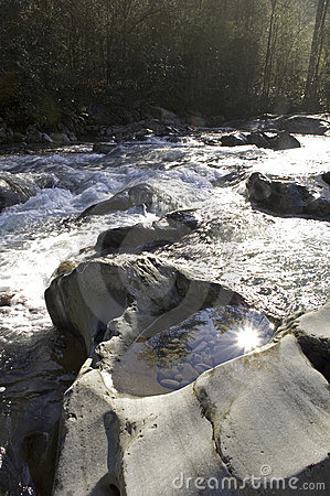 Sunlight on Mountain Stream
