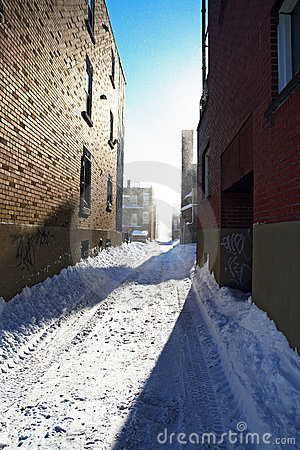 Sunlight after the snowstorm