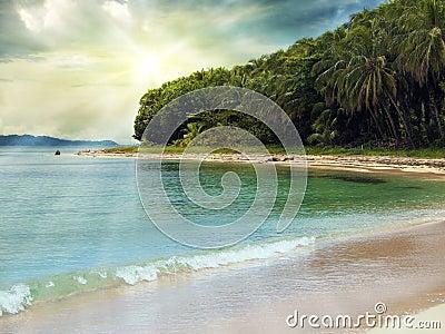 Sunlight in a tropical beach