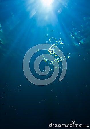 Sunlight from underwater