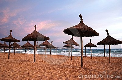 Sunny beach in sunset