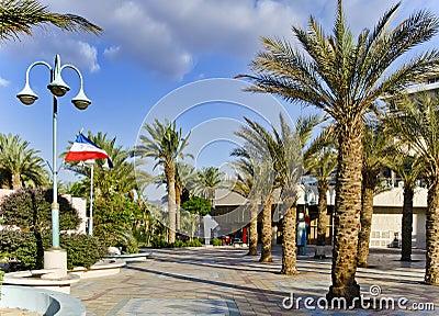 Sunny day on promenade of Eilat city, Israel