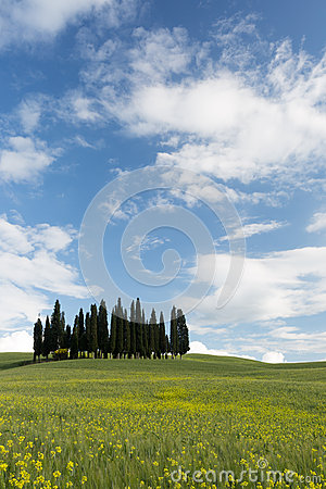 Sunny day in Tuscany