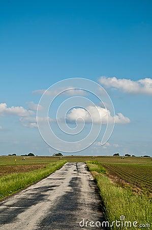 Sunny Farm Road