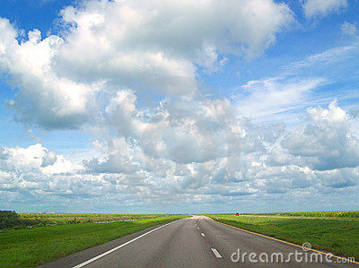 Sunny Florida Road