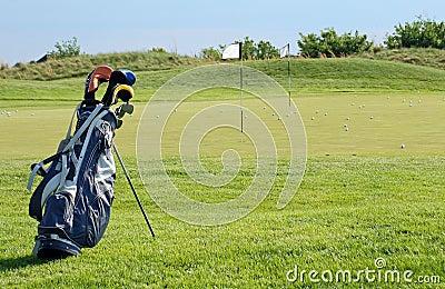 Sunny Golf Scene
