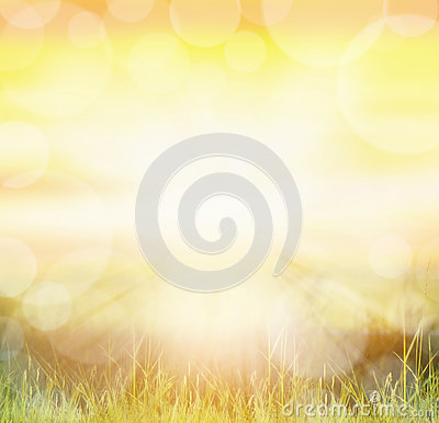 Free Sunny Natur Background With Bokeh And Sun Rays  On Grass Royalty Free Stock Photo - 47082605